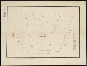 [Plan of house lots for sale on Savin Hill Avenue, Dorchester, Mass.]