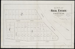 Plan of real estate belonging to T.W. & J.H. Cox