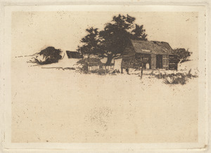 Fisherman's house with large tree