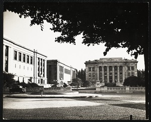 Harvard - Medical School