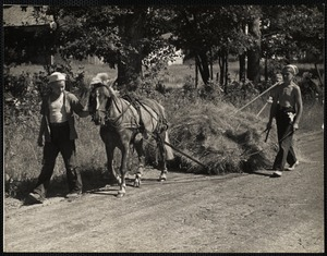 Round Pond, ME. Hay Hoards. L to R: Douglas Leeman of Fall River leading the pony, and Gordon and Kendall Fossett of Round Pond, Maine