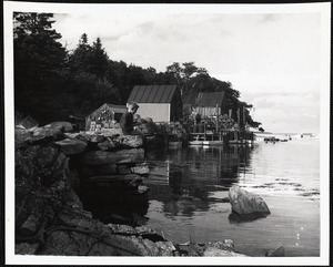 Back Cove - Maine