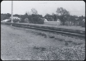 Black and white photograph of landscape (plant, train tracks)