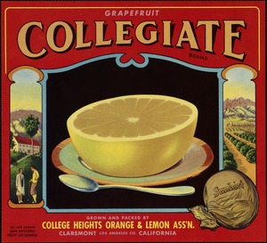 Grapefruit Collegiate Brand: Grown and packed by College Heights Orange & Lemon Ass'n., Claremont, California, Los Angeles Co.
