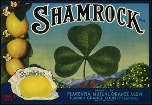 Shamrock Brand: Packed by Placentia Mutual Orange Ass'n., Placentia, Orange County, California