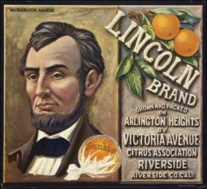 Lincoln Brand: Grown and packed on Arlington Heights by Victoria Avenue Citrus Association, Riverside, Riverside Co. Cal.