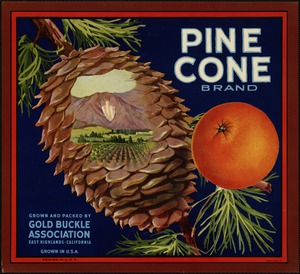 Pine Cone Brand: Grown and packed by Gold Buckle Association, East Highlands, California, grown in U.S.A.