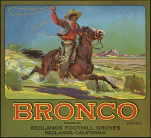Bronco Brand: Packed by Redlands Foothill Groves, Redlands, California