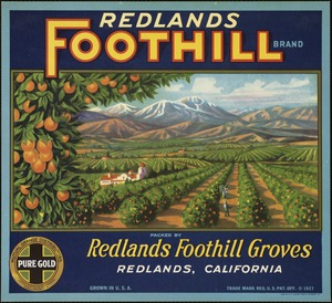 Redlands Foothill Brand: Packed by Redlands Foothill Groves, Redlands, California