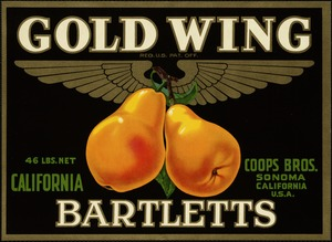 Gold Wing: Bartletts, California, Coops Bros., Sonoma, California, U.S.A.