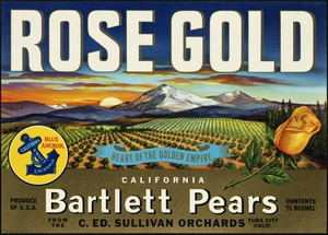 Rose Gold: Blue Anchor California Fruit Exchange, heart of the golden empire, California bartlett pears from the C. Ed. Sullivan Orchards, Yuba City, Calif.