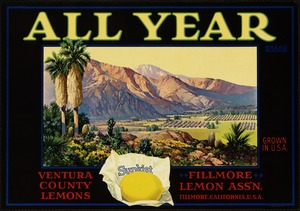 All Year Brand: Ventura County lemons, Fillmore Lemon Ass'n, Fillmore, California, U.S.A.