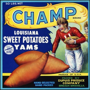 Champ Brand: Louisiana sweet potatoes, yams, produce of U.S.A., packed by Dupuis Produce Company, Breaux Bridge, LA
