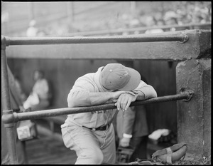 Bill Terry of the Giants hangs his head in shame