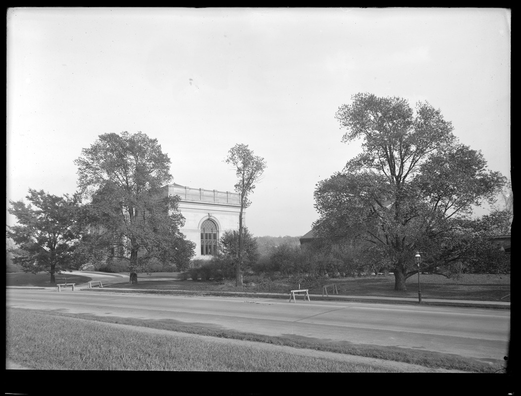 Distribution Department, Chestnut Hill Reservoir, work on English Elm trees along Beacon Street; looking towards stone Stable and Chestnut Hill Low Service Pumping Station; trimming, Brighton, Mass., Nov. 1920-1921
