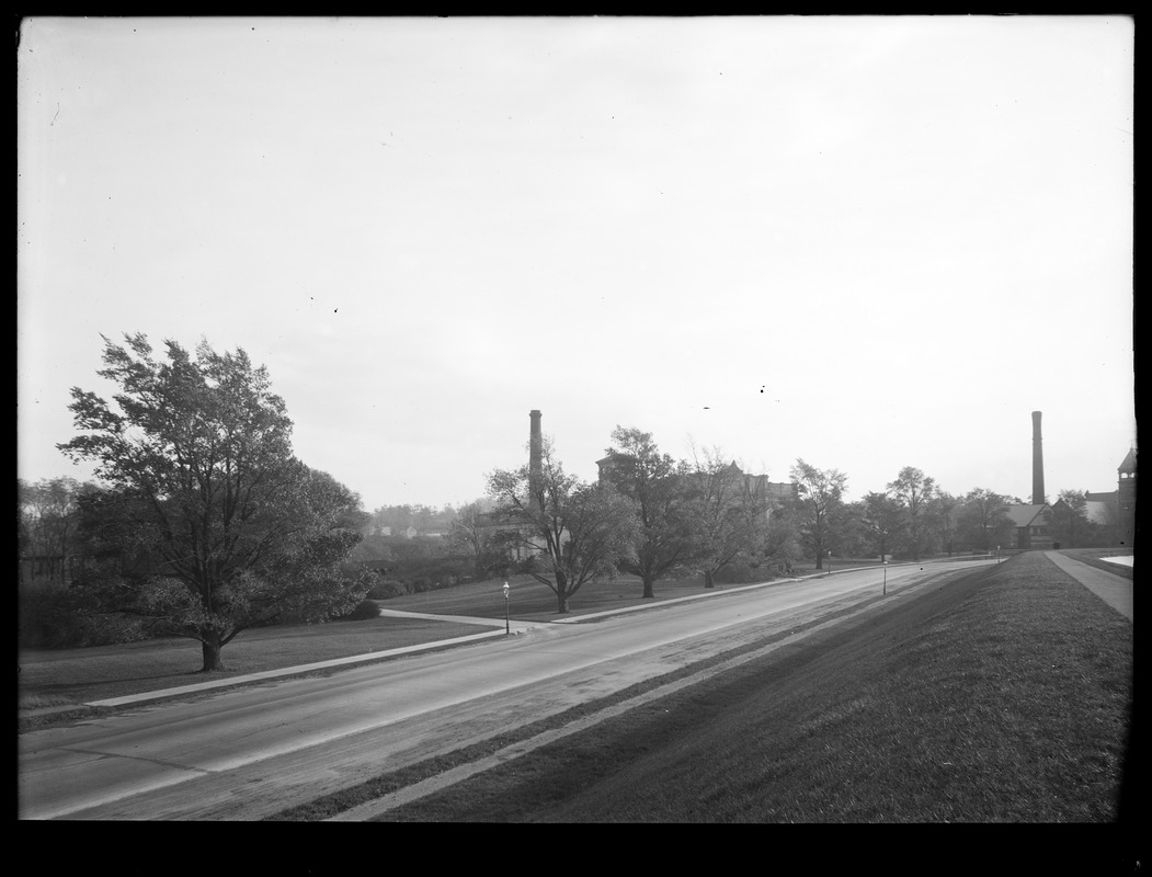 Distribution Department, Chestnut Hill Reservoir, work on English Elm trees along Beacon Street; looking along Beacon Street towards Chestnut Hill Low Service and High Service Pumping Stations, Brighton, Mass., Nov. 1920-1921