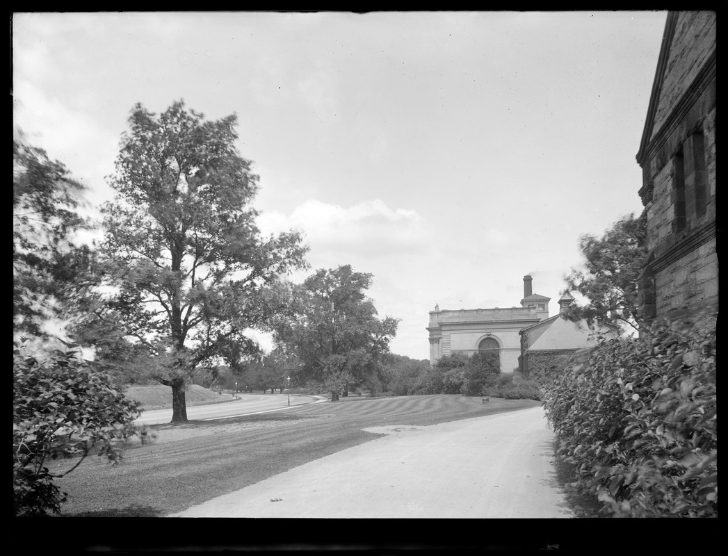 Distribution Department, Chestnut Hill Reservoir, work on English Elm trees along Beacon Street; looking towards Garage and Chestnut Hill Low Service Pumping Station, Brighton, Mass., Nov. 1920-1921