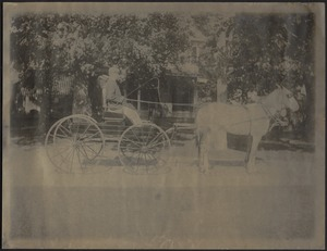 Ashdale Farm. Unidentified man in horse and buggy in front of house with awning.