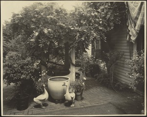 Ashdale Farm. Well and garden terrace with two ceramic geese and potted plants.