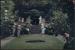 Ashdale Farm. View of Rose Garden in bloom; group of women near stairs