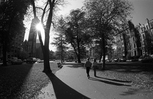 Afternoon on lower Commonwealth Avenue (fisheye lens), downtown Boston