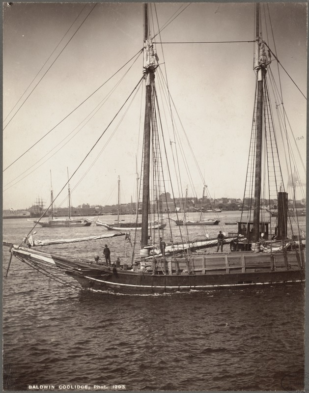 Boston, Massachusetts. Harbor view about 1880, looking toward East Boston