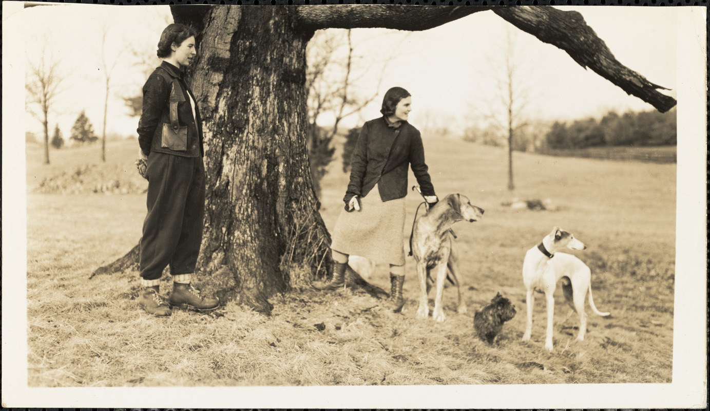 Two women stand at the base of a large old tree with three dogs