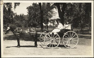 A woman sits in a four-wheeled carriage, its hood folded down, drawn by a dark-colored horse
