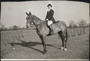 A woman riding attire sits in a saddle atop a sleek, well-groomed horse
