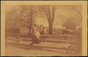 A woman sits on the top rail of a split-rail fence and looks  at a dark-colored horse who stands in a field or paddock just beyond the fence