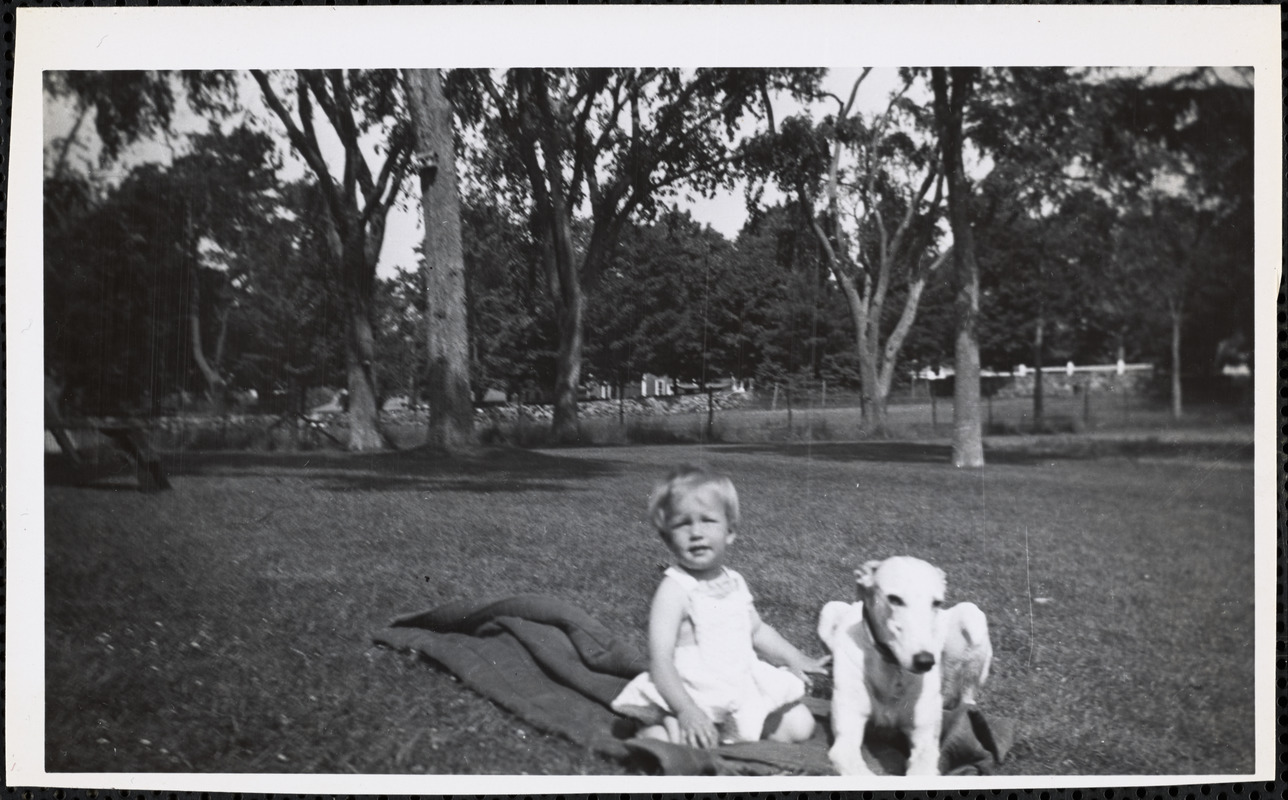 A small child sits with a greyhound in an open expanse of grass on a partially folded, dark-colored blanket