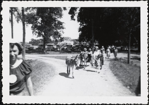 Women dressed in summer clothing walk with two donkeys up an unpaved road