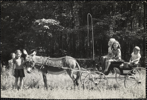 A group of five girls pose in and around a four-wheeled carriage pulled by a donkey