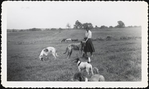 A woman stands in a field with four dogs