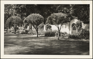Shade-dappled lawn with three trimmed trees mid-ground and white wall with archway and gate behind