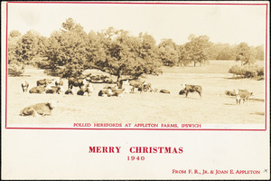 Polled Herefords at Appleton Farms, Ipswich. Merry Christmas, 1940, from F.R., Jr. & Joan E. Appleton