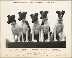 Barberry Kennels, Appleton Farms, Ipswich, Mass. Merry Christmas 1947,  from J.R., Jr. & Joan E. Appleton