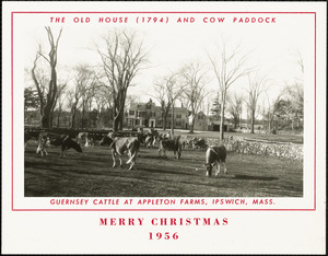 The Old House (1794) and cow paddock.  Merry Christmas, 1956