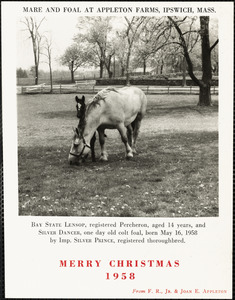 Mare and foal at Appleton Farms, Ipswich, Mass. Merry Christmas, 1958, from F. R., Jr. & Joan E. Appleton