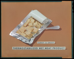 Thermostabilized wet meat product, turkey & gravy