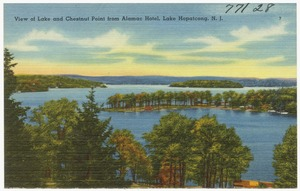 View of Lake and Chestnut Point from Alamac Hotel, Lake Hopatcong, N. J.