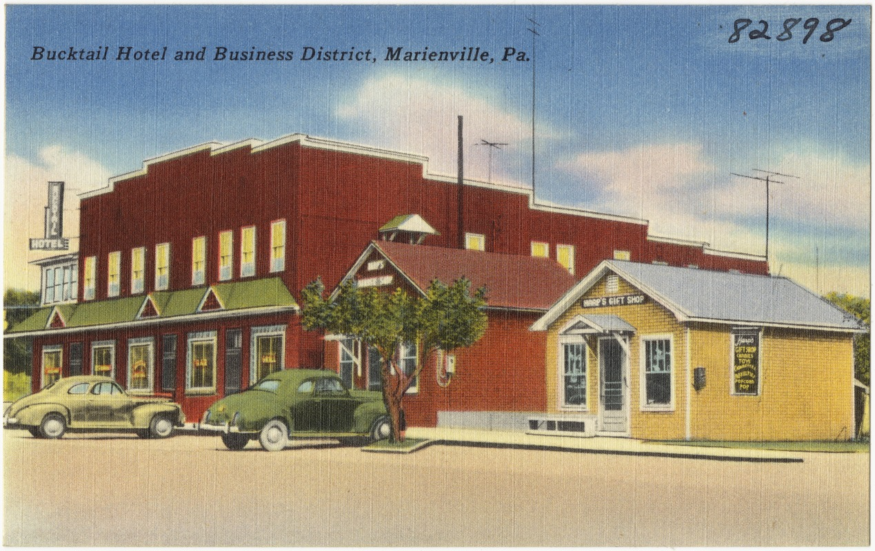 Bucktail Hotel and Business District, Marienville, Pa.
