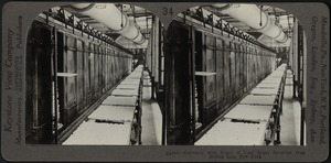 Conveyor with trays of loaf sugar, New York