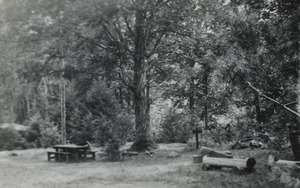 Civilian Conservation Corps (CCC) Camp, State Forest, 1930s