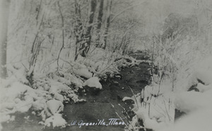 Chapman Brook during winter