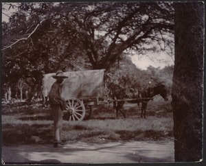 One western man in wide-brimmed hat standing near horse-drawn covered wagon