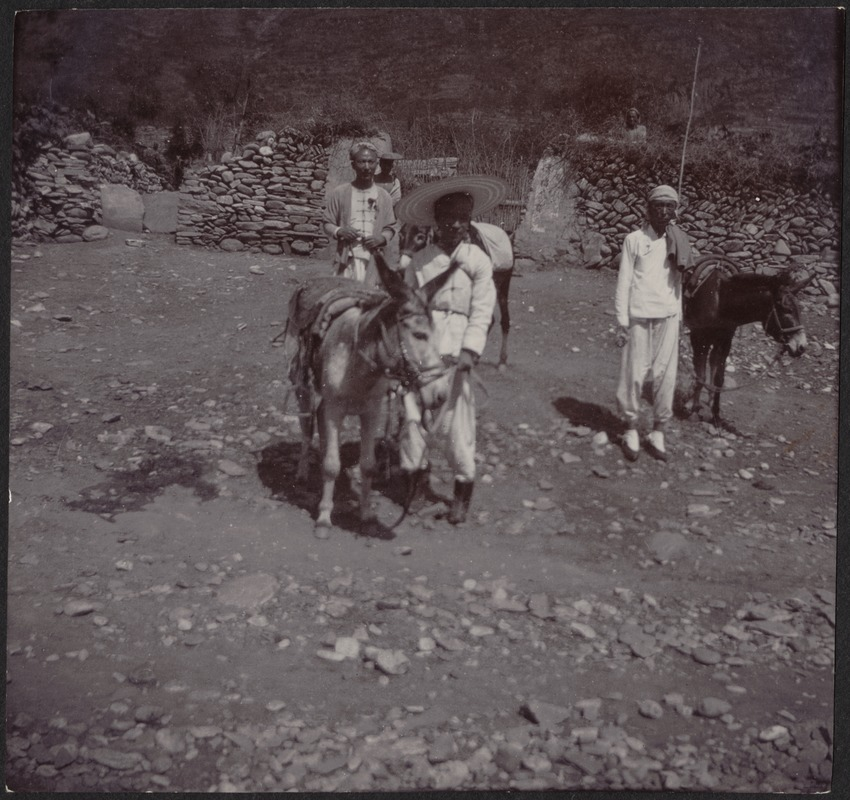 4 Chinese men with donkeys standing next to old stone wall China