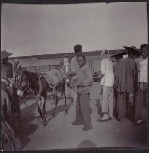 Chinese villagers and donkey