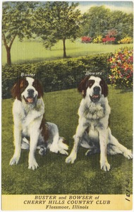 Buster and Bowser of Cherry Hills Country Club, Flossmoor, Illinois