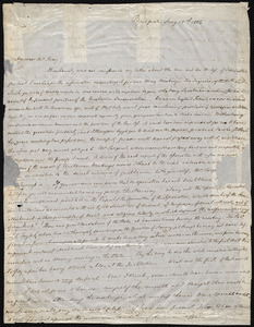 Letter from S. Alfred Steinthal, Bridgewater, [England], to Samuel May, May 19th, 1856